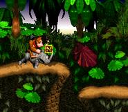 Jungle Hijinxs - Letter N - Donkey Kong Country