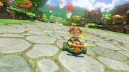 Animal Crossing - MK8 (été) 5