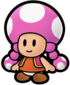 Toadette ( paper mario).png