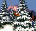 DKC Screenshot Eiszeit-Allee 3