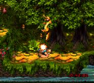 DKC3 Screenshot Flotte Fluss-Flitzerei 4