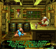 DKC3 Screenshot Brambles Bungalow
