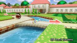 Jardin de Peach dans Mario Kart Wii.png