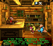 DKC3 Screenshot Blunders Bude