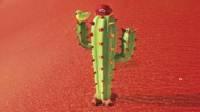 SMO Screenshot Kaktus