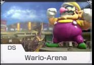MK8 Screenshot Wario-Arena Icon