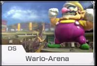 MK8 Screenshot Wario-Arena Icon.png