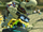 MK8 Screenshot Knochen-Bowser.png