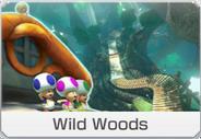 MK8-DLC-Course-icon-WildWoods