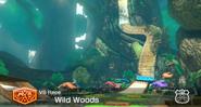 MarioKart8 WildWoods