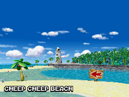 Cheepbeach