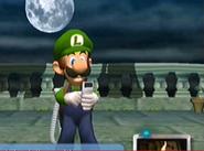 Hung Luigi3