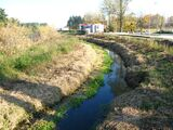 Czarna Struga (rzeka)