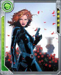 [Rose Red] Black Widow