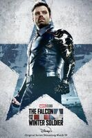 The Falcon and the Winter Soldier poster 004