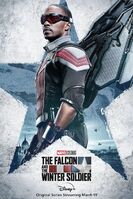 The Falcon and the Winter Soldier poster 003