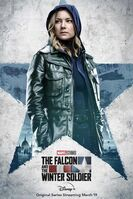 The Falcon and the Winter Soldier poster 005