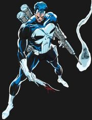 Punisher-marvel-comics-5253110-612-800.jpg