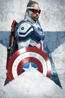 The Falcon and the Winter Soldier poster 010 Textless