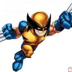 Wolverine Squad.jpg