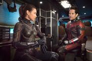 Ant-Man-and-the-Wasp-Evangeline-Lilly-and-Paul-Rudd