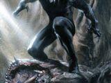 T'Challa (Tierra-616)