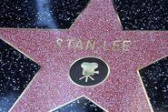 Звезда Стэна Ли