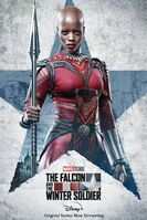 The Falcon and the Winter Soldier poster 009