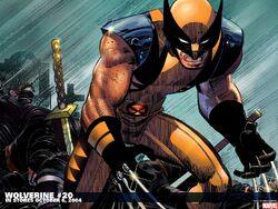 Wolverine wallpapers 26.jpg