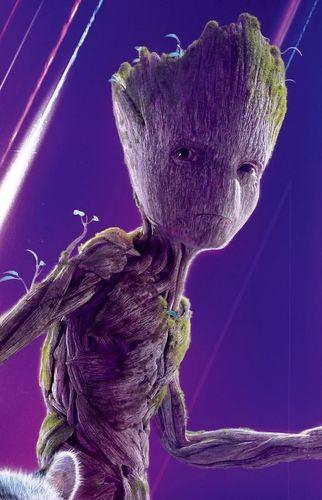 Groot (Tierra-199999)