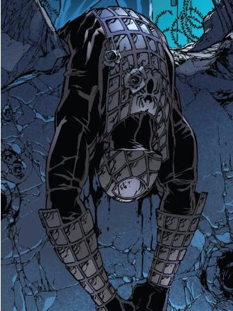 Peter Parker (Terra-14132)