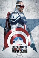 The Falcon and the Winter Soldier poster 010