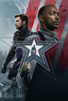 The Falcon and the Winter Soldier poster 002 textless