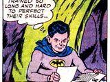 Bruce Wayne, Jr. (Earth-154)