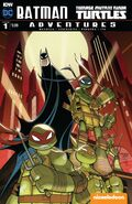 Batman Teenage Mutant Ninja Turtles Adventures Vol 1 1