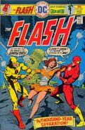 The Flash Vol 1 237