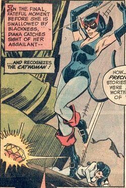 Catwoman 1960s1.jpg