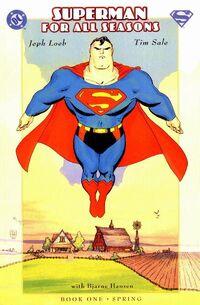 Superman for All Seasons 1.jpg