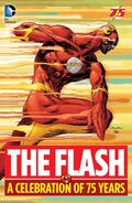 The Flash A Celebration of 75 Years