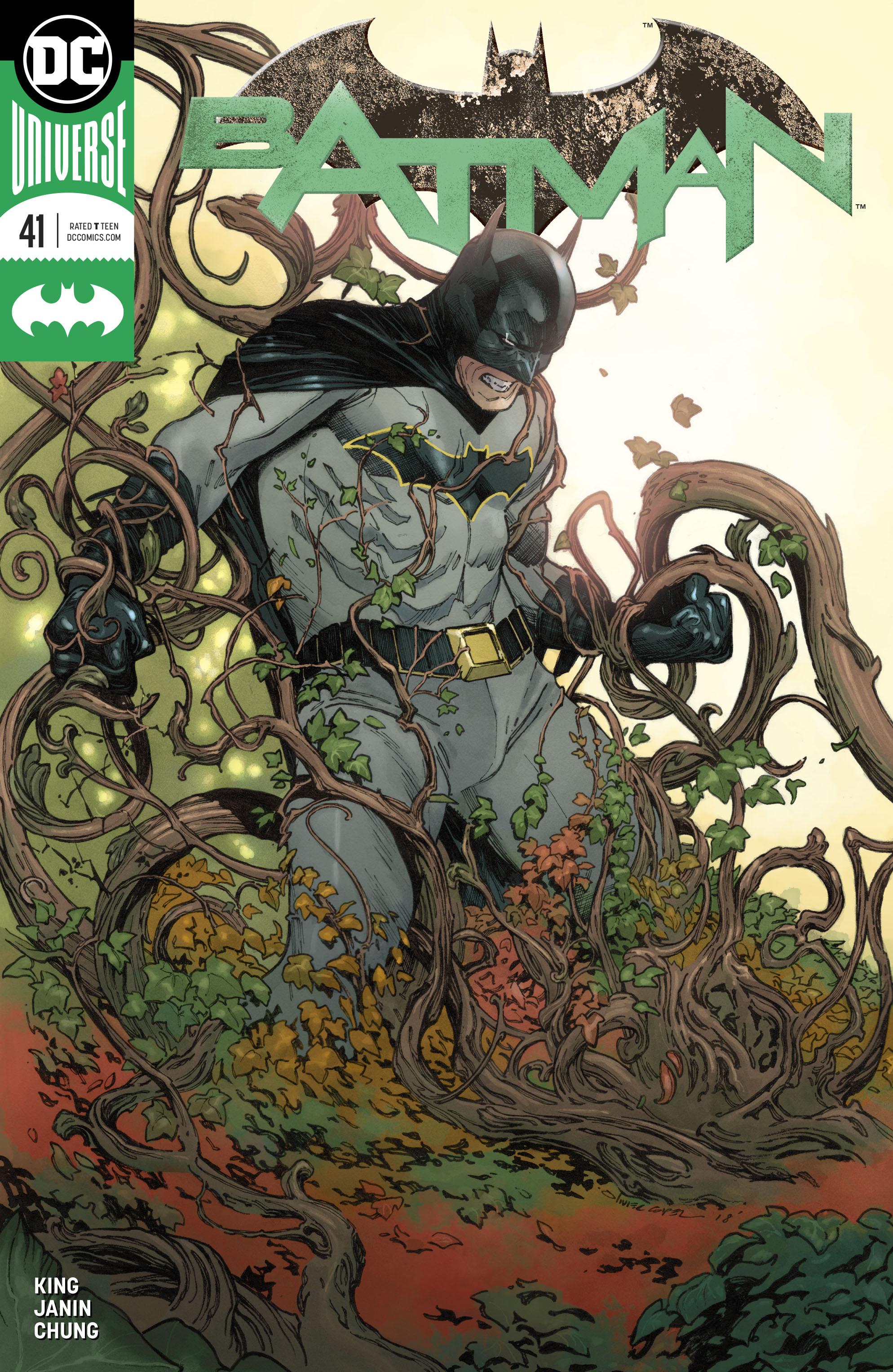 Batman Vol 3 41 Variant.jpg