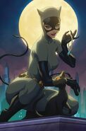 Catwoman Vol 5 14 Textless Variant