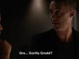 Grodd (Arrowverse: Earth-19)