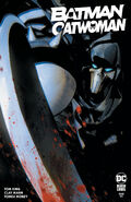 Batman Catwoman Vol 1 6