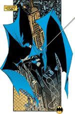 Batman in the Dark