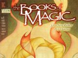 The Books of Magic Vol 2 21