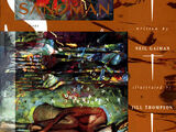 Sandman Vol 2 48