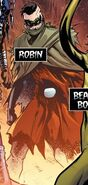 Robin Falling Through the Cracks 0001