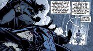Nightwing Hush Beyond 0001