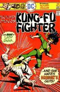 Richard Dragon Kung-Fu Fighter Vol 1 5