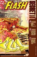The Flash Secret Files and Origins 3